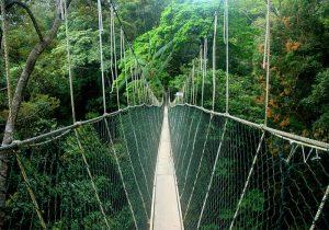 پل معلق پارک تامان نگارا
