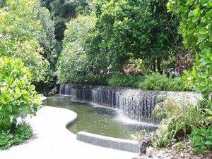 باغ گیاه شناسی سنگاپور