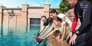 محل های نگهداری دلفین دبی