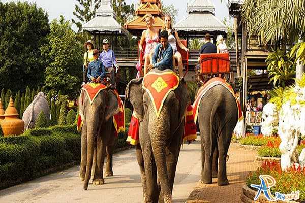 کجای تایلند فیل سوار شویم